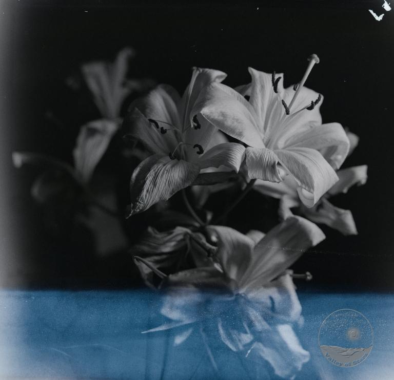 main_image-10